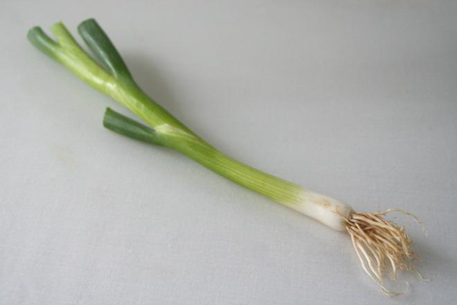 spring-onion-1329752