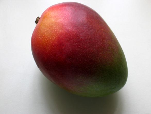 mango-1478573